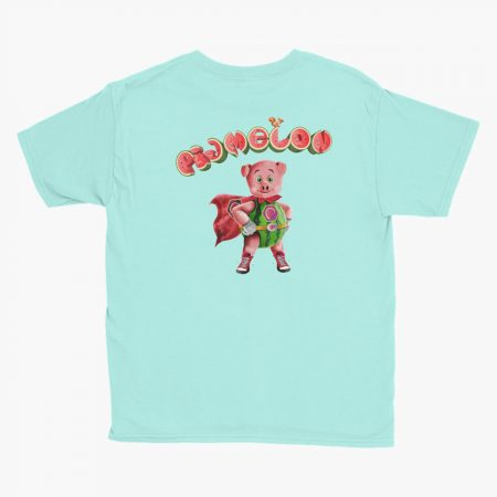 Pigmelon Essentials Youth Short Sleeve T-shirt Teal Ice